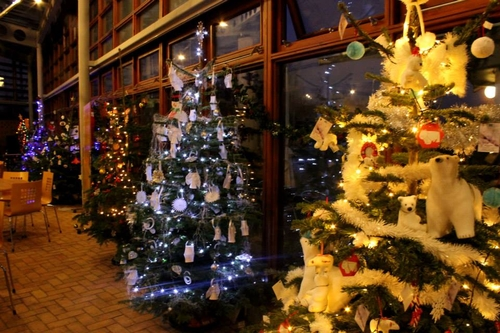 Christmas Tree Festival & Farmers' Market, The Forest ...
