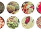 Redditch Retail Market